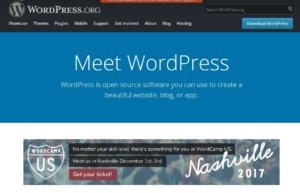 wordpress com or org
