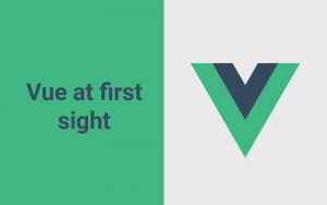 using vue js